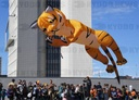 Russia Tiger Day