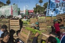 Farmers Protest in Argentina