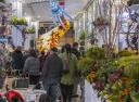 45th annual Macy's Flower Show heralds the arrival of Spring