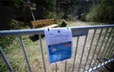 Coronavirus - Daffodil meadows in Perlenbachtal closed