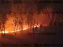 CHINA SICHUAN FOREST FIRE