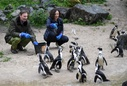 Tierpark Berlin opens first part of the African landscape
