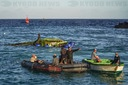 Vehicles Evacuation from Capsized Ferry in Bali, Indonesia.
