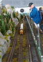 Record model railway opened in the Heide
