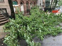 Damages caused by Tropical Storm Isaias in Manhattan.