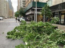 Damages caused by Tropical Storm Isaias in Manhattan