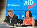 Press conference of the Brandenburger AfD after parliamentary group meeting