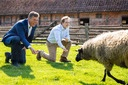 Conservation of old and rare breeds of farm animals