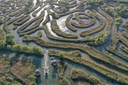 Reed Labyrinth In Yancheng City