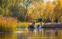 Autumn Scenery In Hohhot City