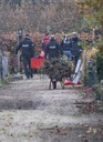 Rendsburg female murder - sniffer dogs search in the allotment
