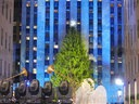 Rockfeller Christmas Tree Lighting Ceremony.